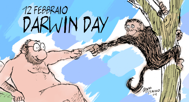 Darwin incontri